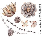 watercolor set of  botanical...   Shutterstock . vector #756410224