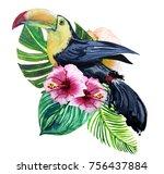 watercolor print of exotic bird ...   Shutterstock . vector #756437884