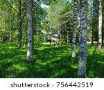 sculpture of mama moose and her ...   Shutterstock . vector #756442519