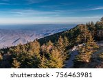 Top Of Mount Mitchell State...