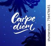 carpe diem   latin phrase means ... | Shutterstock .eps vector #756478651