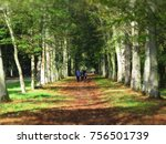 autumn in the gardens of the... | Shutterstock . vector #756501739
