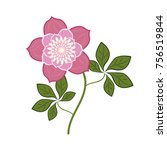 flower rose pink  vector | Shutterstock .eps vector #756519844