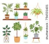 house indoor vector plants and... | Shutterstock .eps vector #756531601