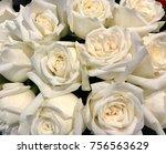 closeup pure white rose flowers....   Shutterstock . vector #756563629
