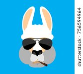 cool lama alpaca serious face... | Shutterstock .eps vector #756594964