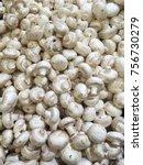 champignons. fresh champignons  ... | Shutterstock . vector #756730279