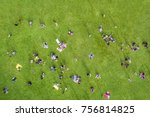 top view of the  many people... | Shutterstock . vector #756814825