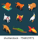 pet shop colorful isometric...   Shutterstock .eps vector #756815971