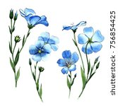 wildflower flax in a watercolor ...   Shutterstock . vector #756854425