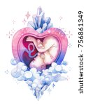 watercolor embryo inside the... | Shutterstock . vector #756861349