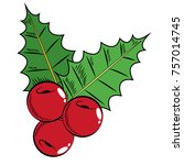 christmas fruits with leaves... | Shutterstock .eps vector #757014745