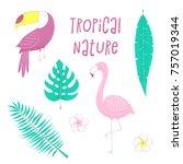 tropical design with flamingo ... | Shutterstock .eps vector #757019344