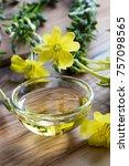 fresh evening primrose flowers...   Shutterstock . vector #757098565
