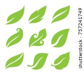 leaves icon set | Shutterstock .eps vector #757241749