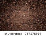 texture of dirt land | Shutterstock . vector #757276999