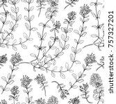 thyme branch hand drawn vector... | Shutterstock .eps vector #757327201