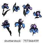 japanese iris flower set.hand...   Shutterstock .eps vector #757366459