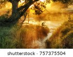 river. spring morning by the... | Shutterstock . vector #757375504