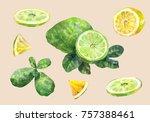 citrus fruit. lemon and lime.... | Shutterstock . vector #757388461