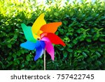 colorful turning in the garden. | Shutterstock . vector #757422745