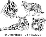 set of vector drawings on the... | Shutterstock .eps vector #757463329