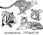 set of vector drawings on the... | Shutterstock .eps vector #757466719