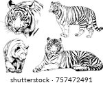 set of vector drawings on the... | Shutterstock .eps vector #757472491