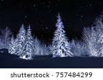 winter night landscape. spruce... | Shutterstock . vector #757484299