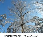 beautiful christmas snowy day    Shutterstock . vector #757623061