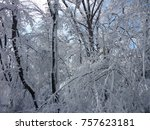 beautiful christmas snowy day    Shutterstock . vector #757623181