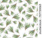 seamless pattern with pine tree ... | Shutterstock . vector #757730065