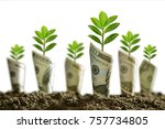 image of bank notes rolled... | Shutterstock . vector #757734805