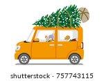 Car Loading Christmas Tree On...