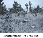 landscape of snow covered pine... | Shutterstock . vector #757751455