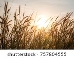 wonderful landscape from the... | Shutterstock . vector #757804555
