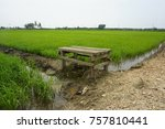 a panorama at paddy field | Shutterstock . vector #757810441
