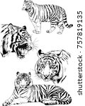 set of vector drawings on the... | Shutterstock .eps vector #757819135