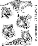 set of vector drawings on the... | Shutterstock .eps vector #757819141