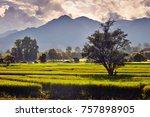 a sunset landscape | Shutterstock . vector #757898905