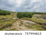 walks on the mountain make you... | Shutterstock . vector #757994815
