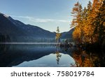 wonderful autumn. sunny misty... | Shutterstock . vector #758019784