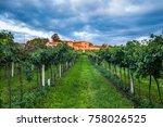 grape harvest in chianti italy   Shutterstock . vector #758026525