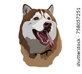 cheerful husky dog | Shutterstock .eps vector #758057251