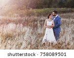 beautiful bride and groom in... | Shutterstock . vector #758089501