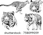 set of vector drawings on the... | Shutterstock .eps vector #758099059