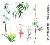 tropical bamboo in a watercolor ...   Shutterstock . vector #758130097