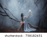 mysterious sorceress in a... | Shutterstock . vector #758182651