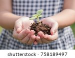 tree planting growing on soil... | Shutterstock . vector #758189497