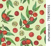 seamless pattern with camu camu ... | Shutterstock .eps vector #758190331